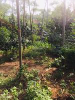bán mảnh đất tại thôn hạnh phúc xã hòa sơn dt 790m2