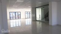 cho thuê sàn vp kd gym spa tại tòa nhà mặt phố nguyễn thái học dt 370m2 giá thuê 55trth