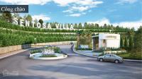 cần bán nhanh nhiều nền sentosa villa 250m2 300m2 đã nhận nền giá đầu tư 0908605312
