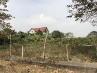 chính chủ bán đất khu biệt thự sinh thái cẩm đình phúc thọ 1300m2 giá 39 trm2 0842195599