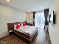 căn hộ cao cấp 1pn hado centrosa q10 full nội thất sang trọng giá thuê 155trtháng