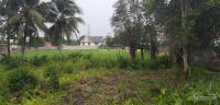 bán 2470m2 đất trồng cây có 300m2 thổ cư bình mỹ giá chỉ 42 triệum2 lh 0915570579 quang thành