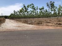 bán gấp đất vườn gần ql14 chơn thành bình phước diện tích 1033m2 giá 700 triệu