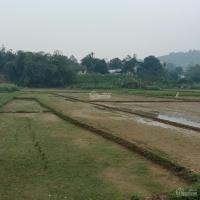 cần bán 3200m2 view cánh đồng thế đất cao giá hơn 2 tỷ