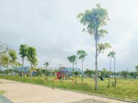 suất ngoại giao đất biệt thự cuối cùng tại khu đô thị sinh thái golden hills 240m2 chỉ 175 trm2
