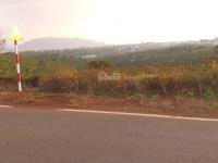 bán đất mặt tiền ngay trung tâm tp đường lý thường kiệt chỉ 2trm2 thổ cư 200m lh 0368058122