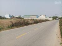 bán 3100m2 đất thổ cư mặt tiền đường lê thị kim xuân thới sơn hóc môn khu vực nhiều kho xưởng