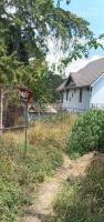 bán đất kqh yên thế tặng 2 cây thông 100 tuổi