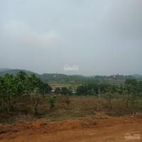 gia đình thuần nông cần bán 3600m2 đất thổ cư đất ở view cánh đồng