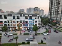 mở bán shophouse tmdv hải đăng đẹp nhất dự án vinhomes ocean park cơ hội để đầu tư và kinh doanh