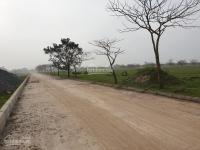 nhận mua và bán lại đất phân lô khu đô thị sinh thái cẩm đình hiệp thuận huyện phúc thọ hà nội