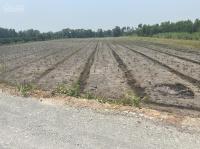 bán đất vườn thạnh lợi bến lức long an