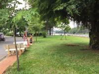 cho thuê nhà nguyên căn mặt tiền đường công viên và sông tại kdc tân quy đông kề bên lotte mart