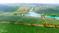 cần bán gấp lô đất view hồ 100m2 chính chủ không tiếp mô giới