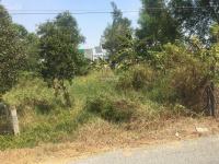 bán đất xã tân lân huyện cần đước tỉnh long an