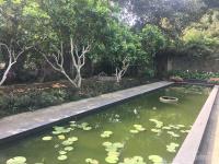 nhượng lại 1400m2 nhà vườn đẹp giá rẻ chỉ việc ở lương sơn hòa bình