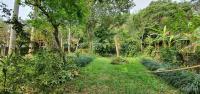 cần bán 3500m2 đất có địa thế đẹp và phong thuỷ tại lương sơn hoà bình
