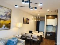 cho thuê căn hộ 2 3 ngủ tại roman plaza tố hữu giá từ 9 trth lh 0902111761 làm nhà ở