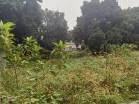 cần bán lô đất 4000m2 giá rẻ nhất vị trí đẹp thích hợp làm nhà vườn nghỉ dưng tại liên sơn ls hb