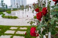 cần bán nhà tại eden rose giá 11 tỷ có thương lượng 0961222125