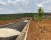 bán đất thổ cư đất ở tại đường lý thường kiệt thành phố bảo lộc dự án pine valley