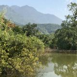 cần bán gấp lô đất cách vườn quốc gia ba vì 15km diện tích 12000m2
