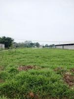 chuyển nhượng 11000m2 trại nuôi gà tại huyện chương mỹ hà nội