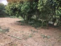 cần bán nhanh lô đất 3700m2 đất làm nhà vườn nghỉ dưng giá rẻ tại hòa sơn lương sơn hòa bình