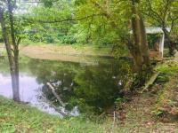 bán đất ba vì hà nội 6500m2 có 1 căn biệt thự vườn cây ao cá cách đường tỉnh lộ 87 200m hn 55km