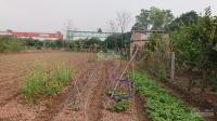 chính chủ cần chuyển nhượng gấp lô đất vườn cách cầu phùng 1km