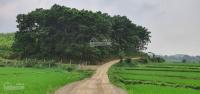 bán 4000m2 đất sổ đỏ có 200m2 đất xây dựng nhà ở nông thôn tại lương sơn hòa bình lh 0971018889