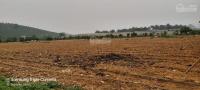 cần chuyển nhượng gấp 13ha đất thổ cư và nhà đất vườn đẹp nhất nhì lương sơn hb