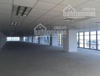 cho thuê tổ hợp văn phòng thương mại dịch vụ phố cầu giấy 4300 m2 giá 150 nghìnm2th