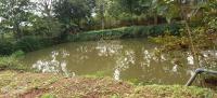 chỉ với 15tỷ bạn đã sở hữu một khuôn viên nhà vườn tại thôn muồng phú vàng vân hòa ba vì hà nội