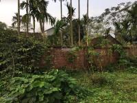 cần bán 1600m2 đất vị trí đẹp tường bao kiên cố tại tiến xuân thạch thất hà nội