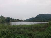 mảnh 2138m2 view hồ siêu thơ mộng tại xã tiến xuân tặng cả vườn bưởi thu hoạch hàng năm chỉ 3 tỷ