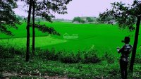 bán 3600m2 đất làm nghỉ dưng view cánh đồng giá rẻ tại hòa sơn lương sơn