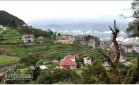đất 1000m2 thổ cư xây nghỉ dưng khách sạn khu 1 khu du lịch tam đảo vĩnh phúc