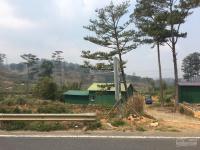 cần bán nhanh lô đất huyện lạc dương tỉnh lâm đồng dt 4600m2 lh 0908561223