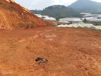 đất nền lạc dương hot nhất lâm đồng 1500m2 cực rẻ