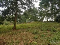 chính chủ cần chuyển nhượng gấp mảnh đất thổ cư đẹp gần sân golf skylake