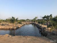 chủ gửi bán nhà vườn view sông đẹp có 1 không 2 tại phú đông