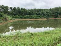 bán khu nông trại vị trí đẹp diện tích 13 ha tại lương sơn hòa bình