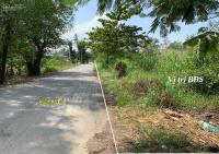 trí bđs đất vườn 3303m2 mặt tiền gốc đường trương văn đa ngay ubnd xã tân nhựt giá tốt