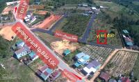 chính chủ bán đất đẹp đinh công tráng bảo lộc dt 14x30m có 196m2 thổ giá rẻ 17 tỷ