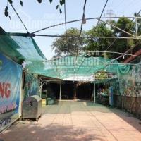 cần sang hệ thống nhà hàng quán ăn hải sản sân vườn thiên đường 2