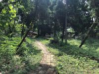 cần bán 5900m2 khuôn viên nhà vườn có ao tại xã nhuận trạch lương sơn hòa bình