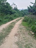 bán gấp đất rừng sản xuất giá rẻ tại lương sơn hòa bình diện tích 47ha