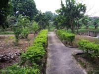 nhượng lại khuôn viên nhà sàn đẹp diện tích 5220m2 có 400m2 đất thổ cư tại hòa sơn lương sơn hb