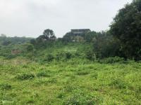 bán 5540m2 đất trang trại nhà vườn có ao view cánh đồng hòa sơn lương sơn hòa bình giá 29 tỷ